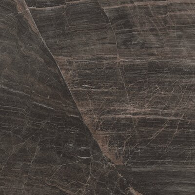 Anthology 16.75 x 16.75 Porcelain Field Tile in Brown