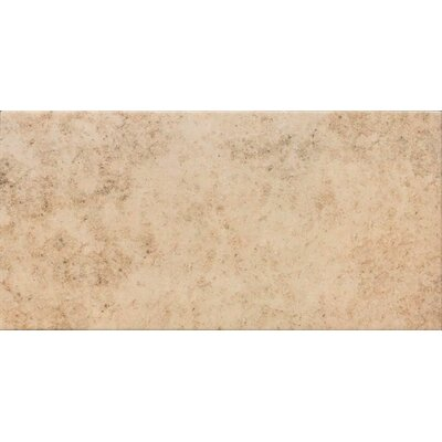 Jura 12 x 24 Porcelain Field Tile in Gold