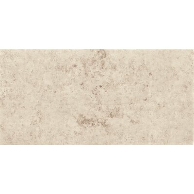 Jura 12 x 24 Porcelain Field Tile in Ivory