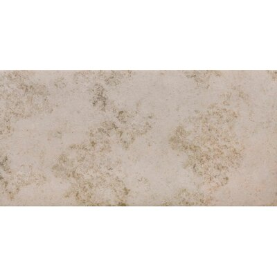 Jura 12 x 24 Porcelain Field Tile in Light Grey