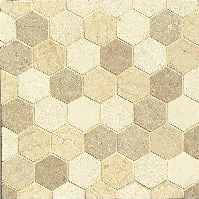 2 x 2 Limestone Mosaic Tile in Beige
