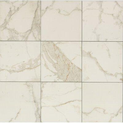 Classic Moderne 12 x 12 Porcelain Field Tile in Calacatta