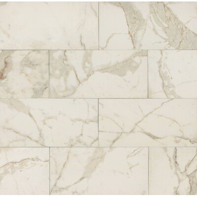 Classic Moderne 12 x 24 Porcelain Field Tile in Calacatta