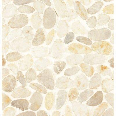Pebble Rock Random Sized Stone Pebble Tile in Sayan
