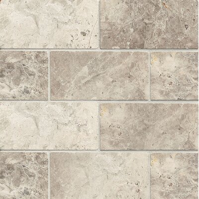 Honed 3 x 6 Marble Mosaic Tile in Sebastian Gray
