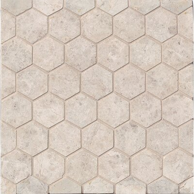 Hexagon Marble Polished Mosaic Tile in Sebastian Gray