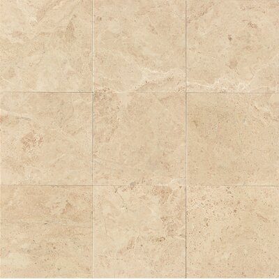 12 x 12 Marble Polished Tile in Cappuccino