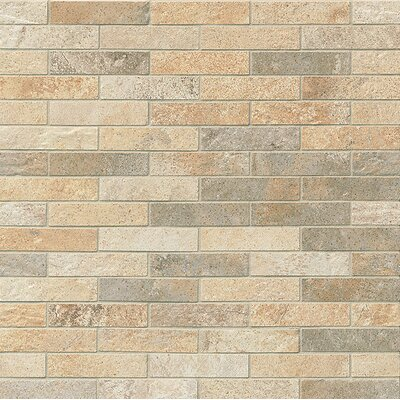 Rok 1 x 3 Porcelain Mosaic Tile in Mix Colors