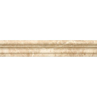 Chair Rail 2 x 12 Marble Polished Tile in Cappuccino