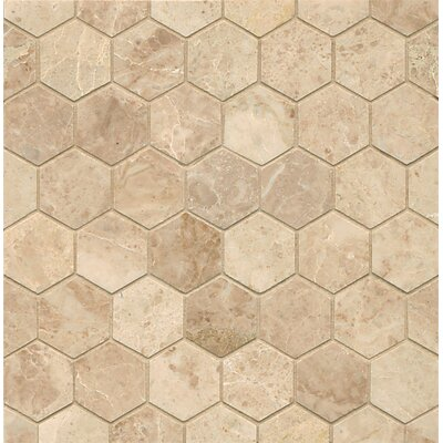 Hexagon 2 Marble Polished Mosaic Tile in Cappuccino