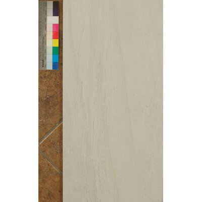 Purestone 12 x 24 Porcelain Wood Look/Field Tile in Bianco