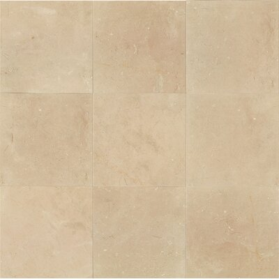 18 x 18 Marble Field Tile in Polished in Crema Marfil Classic