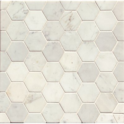 Hexagon Marble Polished Mosaic Tile in White Carrara