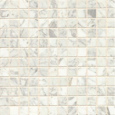 1 x 1 Marble Mosaic Tile in White Carrara