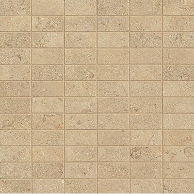 Tribeca 1 x 2 Porcelain Mosaic Tile in Harrison