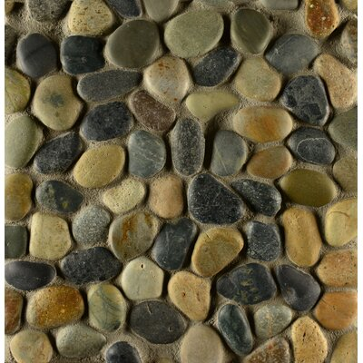 Hemisphere Random Sized Stone Pebble Tile in Riverbed