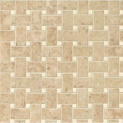 Basket Weave Polished Marble Mosaic Tile in Pasha