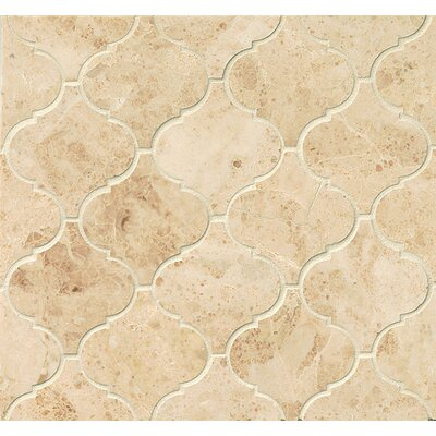 Marble 12.25 x 13.25 Mosaic Tile in Cappuccino