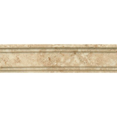 Honed Marble 12 x 3 Chandra Crown Molding Tile in Cappuccino