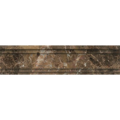 Polished Marble 12 x 3  Chandra Crown Molding Tile in Emperador Dark