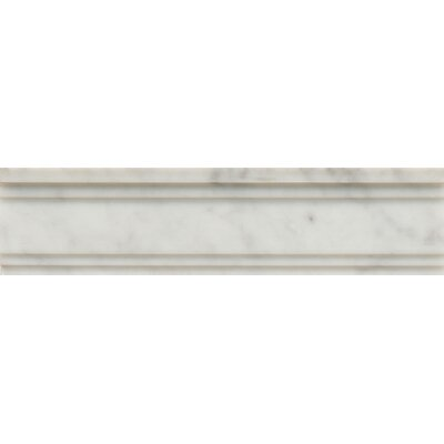 Polished Marble 12 x 3  Chandra Crown Molding Tile in White Carrara