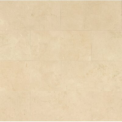 12 x 24 Marble Field Tile in Crema Marfil Classic