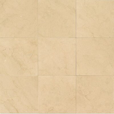 Honed 18 x 18 Marble Field Tile in Crema Marfil Select