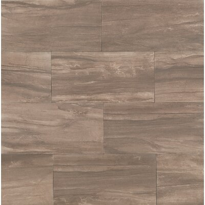 Athena 20 x 40 Porcelain Field Tile in Cliff