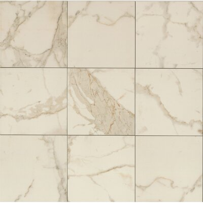 Classic Moderne 18 x 18 Porcelain Field Tile in Calacatta