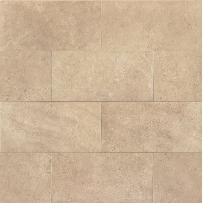 Tribeca 12 x 24 Porcelain Field Tile in Watts