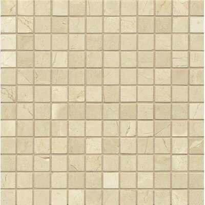 1 x 1 Marble Mosaic Tile in Polished Crema Marfil Select