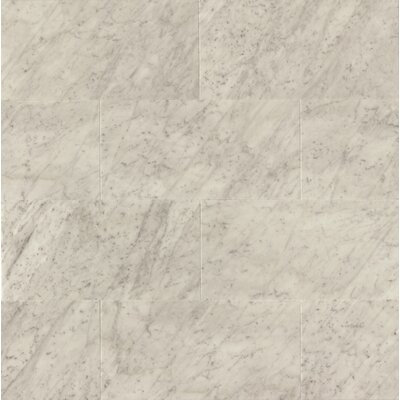 Honed 12 x 24 Marble Field Tile in White Carrara
