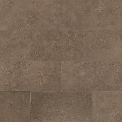 Tribeca 12 x 24 Porcelain Field Tile in Greenwich