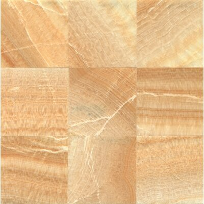 Onyx 12 x 12 Marble Field Tile in Sweet Honey