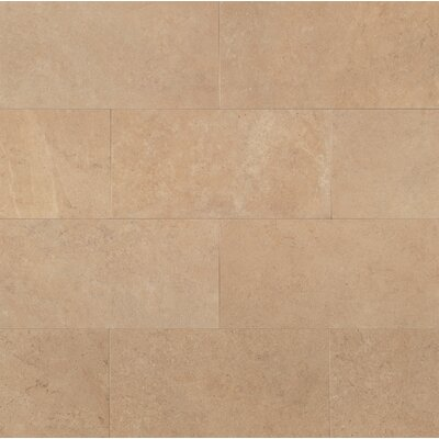 Tribeca 12 x 24 Porcelain Field Tile in Harrison