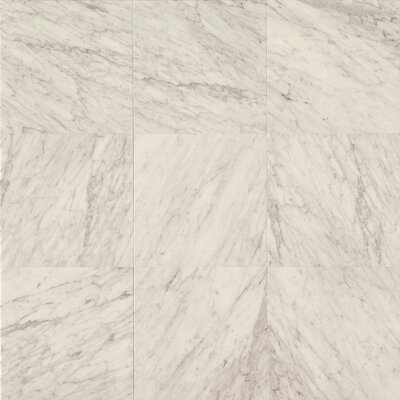 18 x 18 Marble Field Tile in White Carrara