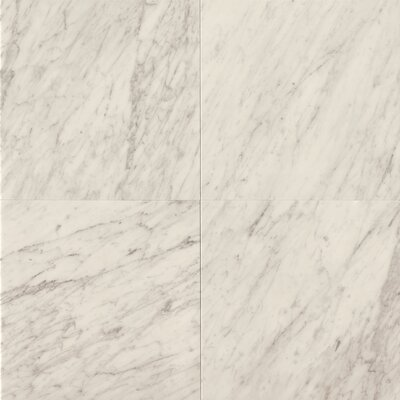 24 x 24 Marble Field Tile in White Carrara