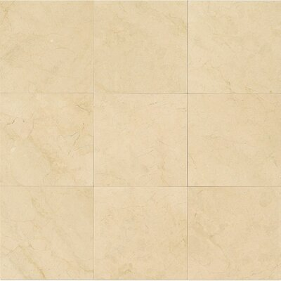 12 x 12 Honed Marble Tile in Crema Marfil Select