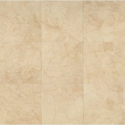 12 x 12 Marble Polished Tile in Crema Marfil Classic
