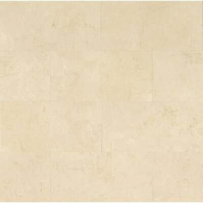 12 x 24 Marble Polished Tile in Crema Marfil Select