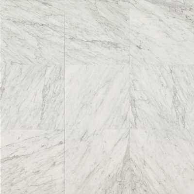 Bedrosians Honed 18 x 18 Marble Field Tile in White Carrara