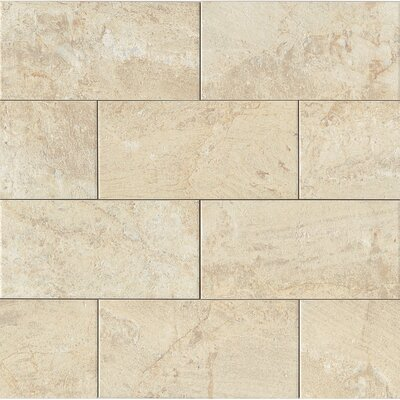 Classic Moderne 12 x 24 Porcelain Field Tile in Cr�me