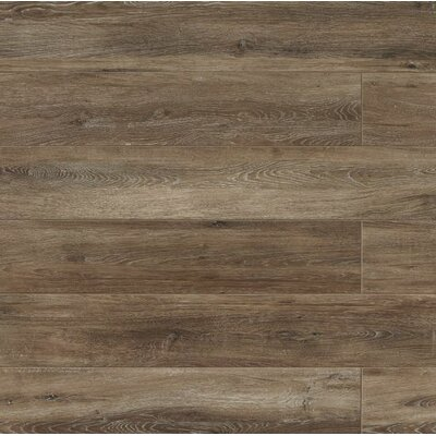 Othello 7.75 x 47.13 Porcelain Wood Field Tile in Brown