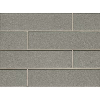 Remy Glass 4 x 16 Glass Field Tile Gloss in Silver