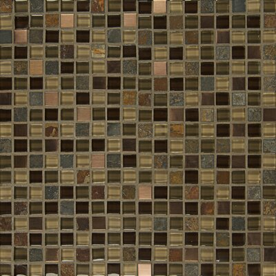 Elume 0.63 x 0.63 Glass Mosaic Tile in Java Bean