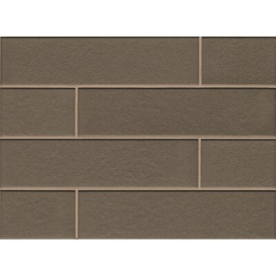 Remy Glass 4 x 16 Mosaic Gloss Mesh Mount Tile in Taupe