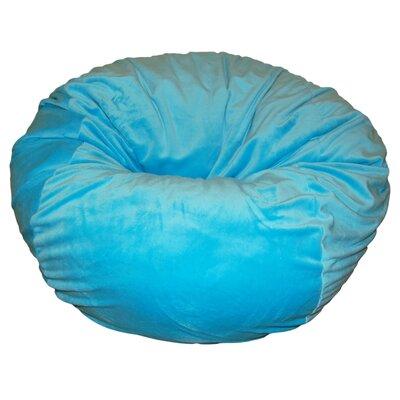 Bean Bag Chair Upholstery: Aqua