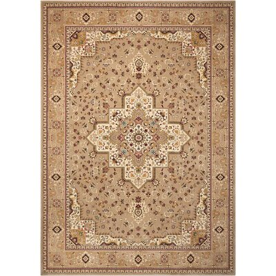 Antiquities Beige Area Rug Rug Size: Rectangle 910 x 132