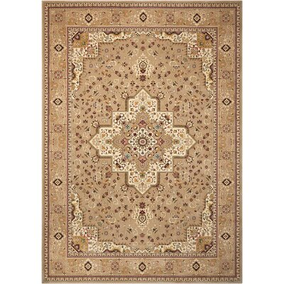 Antiquities Beige Area Rug Rug Size: 7'10