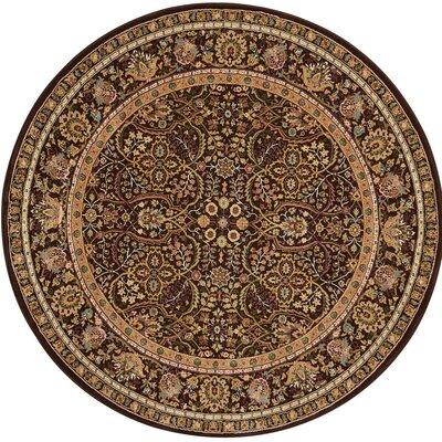 Antiquities Brown Area Rug